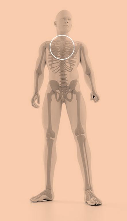 aandoening rug nek podotherapie amsterdam